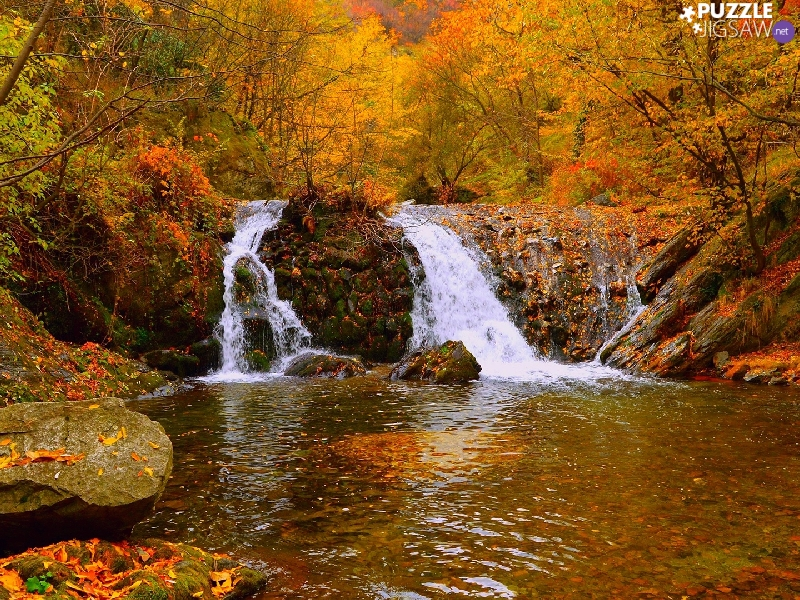 trees, River, rocks, autumn, viewes, waterfall
