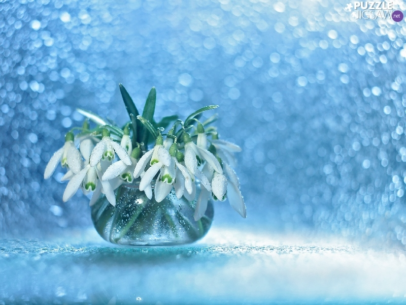 Bokeh, White, Flowers, decoration, vase, snowdrops