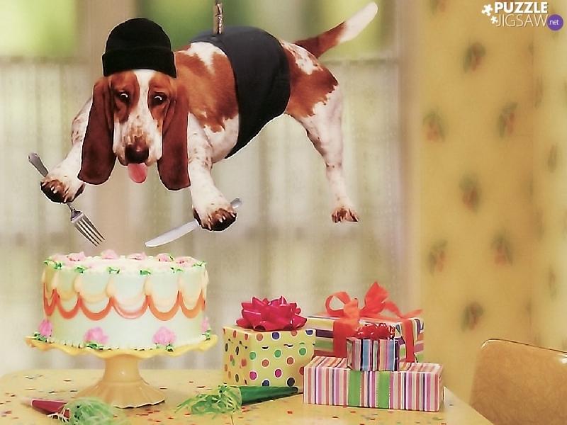 Сувениры подарки низким ценам отведать фирменный торт колен сфотографироваться фоне