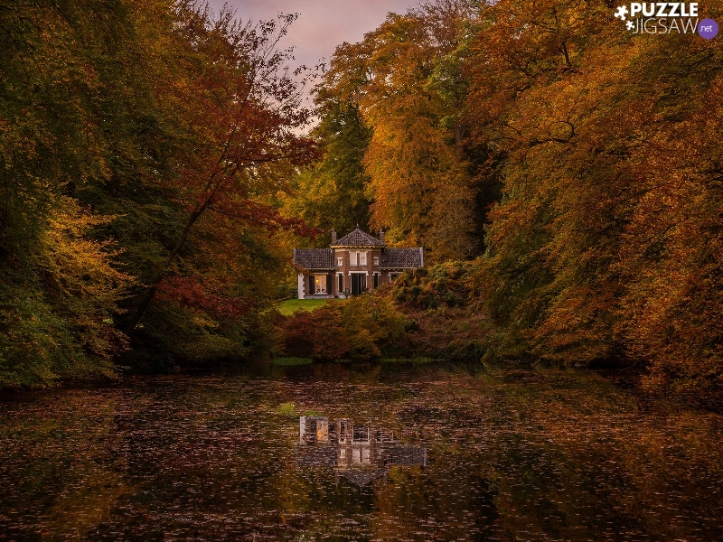 house, trees, Leaf, viewes, autumn, fallen, Pond - car