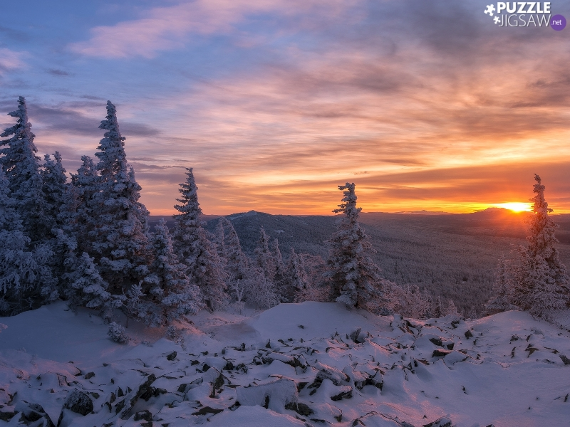trees, forest, Great Sunsets, Snowy, winter, viewes, clouds