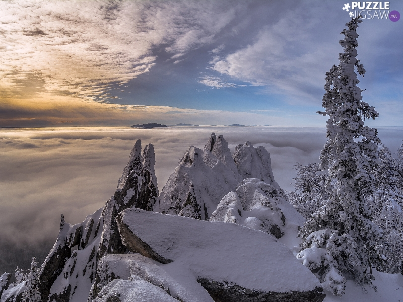 rocks, trees, winter, viewes, Fog, Snowy, Mountains, clouds