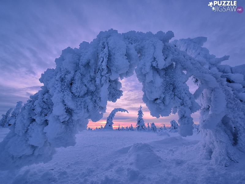 viewes, winter, Lapland, Finland, Great Sunsets, trees