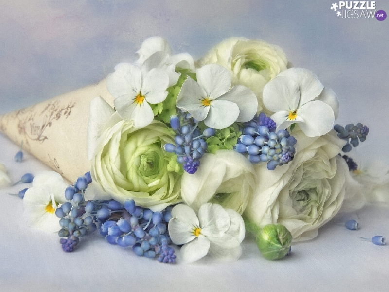 Muscari, bouquet, glaucoma, graphics, pansies, Flowers