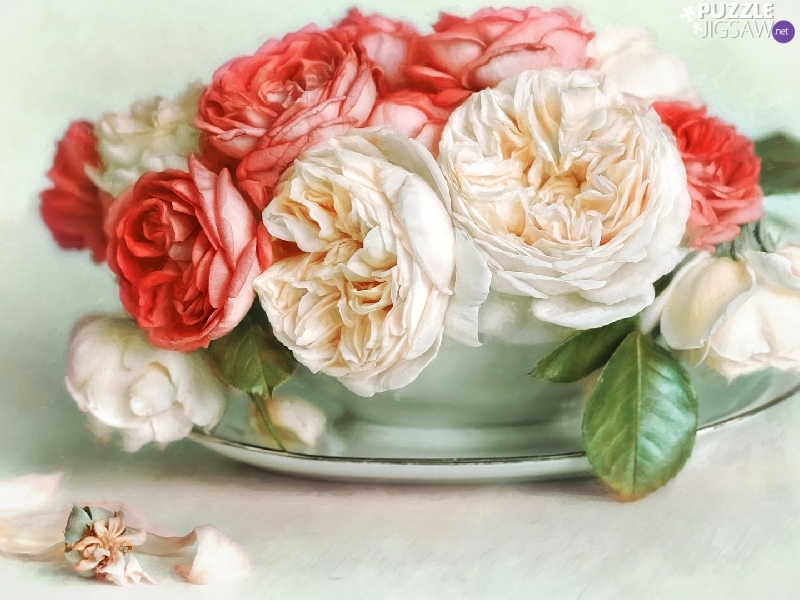 roses, White, Stand, graphics, bowl, Red