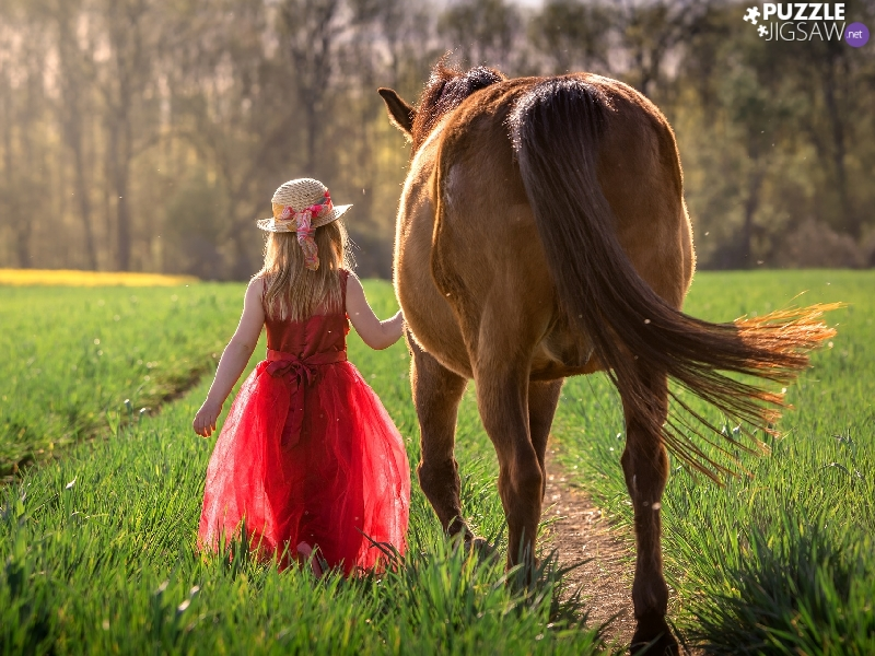 Hat, Horse, red hot, dress, girl