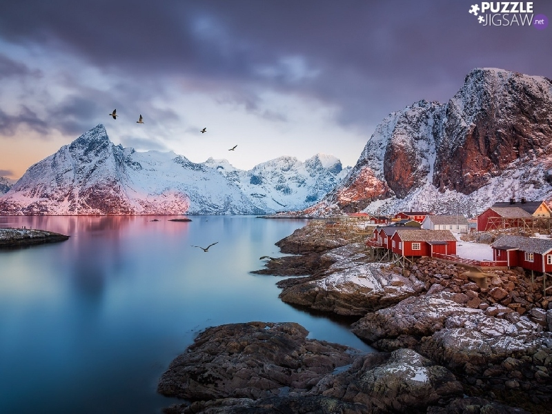 Mountains, Norway, Houses, birds, Reine Village, Lofoten