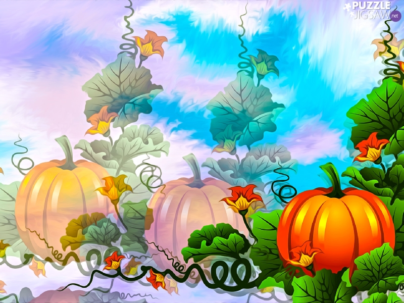 graphics, leaves, Flowers, pumpkin