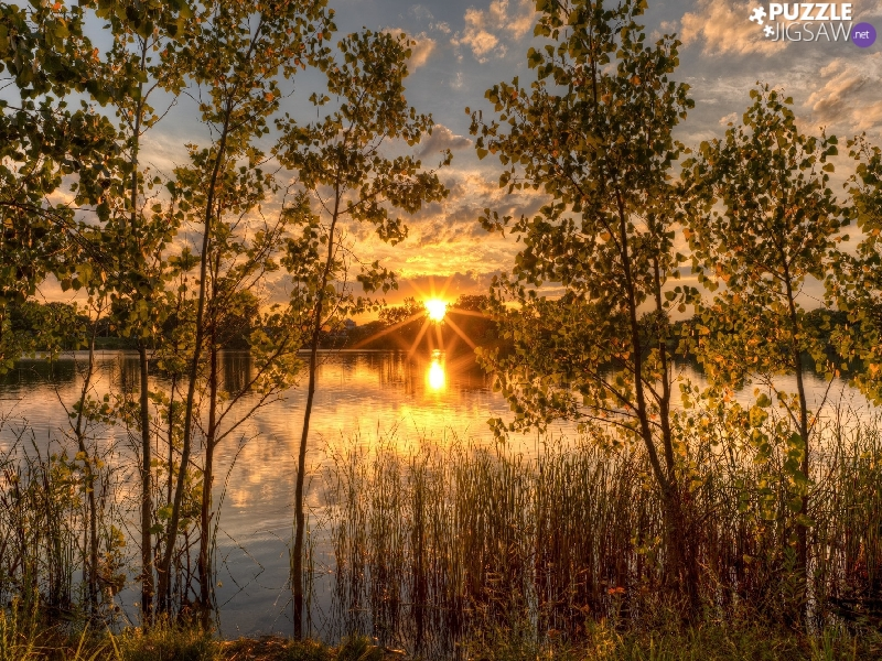viewes, lake, Sunrise, rays, VEGETATION, trees