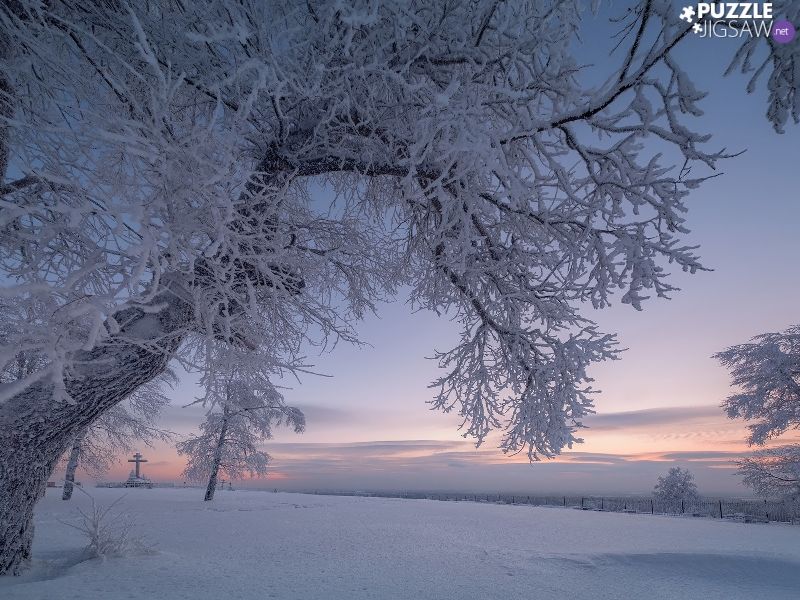 trees, snow, branch pics, Snowy, winter, viewes, Sky