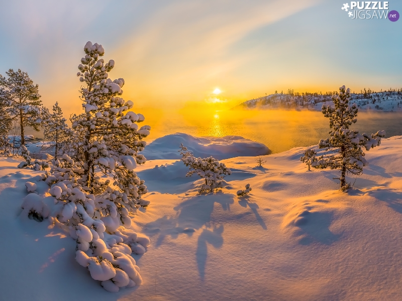 Fog, winter, viewes, Sunrise, trees, lake