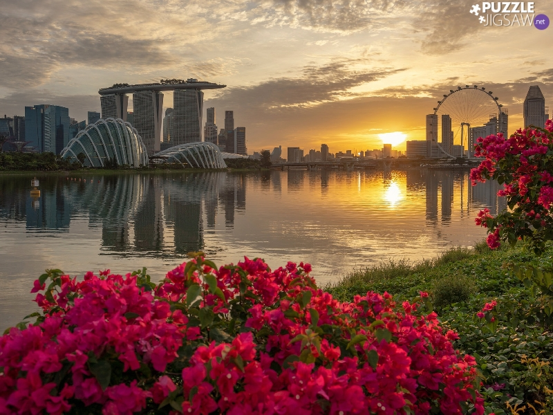 skyscrapers, Singapur, Great Sunsets, bridge, Flowers, Hotel Marina Bay Sands, Marina Bay, River