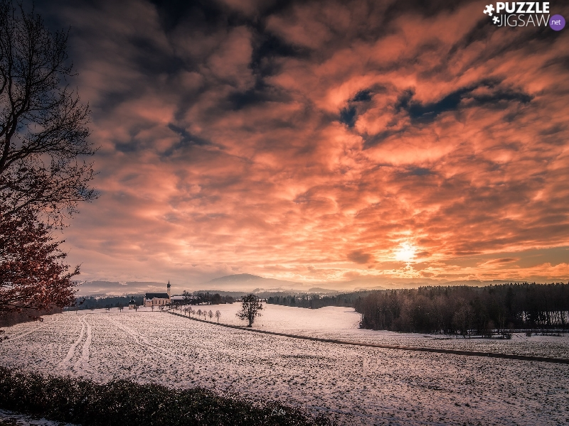 viewes, Great Sunsets, field, trees, winter