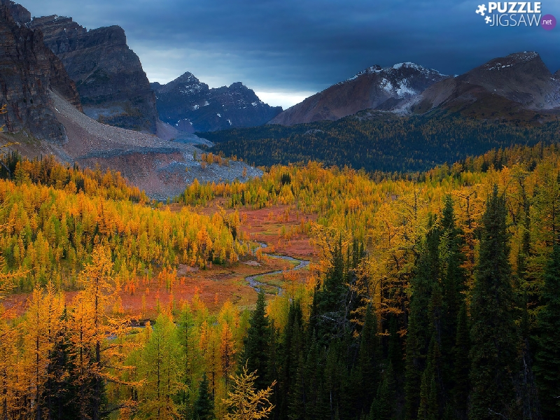 trees, viewes, Valley, forest, Mountains