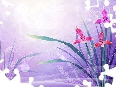 Flowers, 2D, graphics