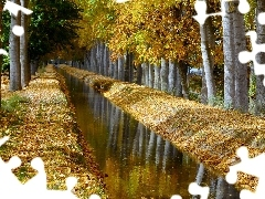 autumn, River, trees, viewes