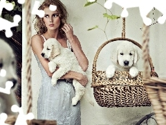 basket, Women, puppies