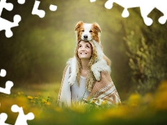 fuzzy, Border Collie, Meadow, Women, background, dog