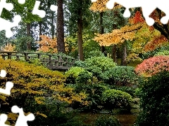 bridges, autumn, japanese, Garden