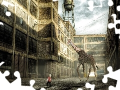 boy, buildings, giraffe