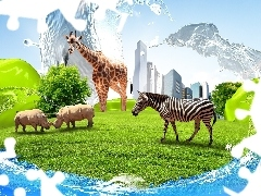clouds, Rhinos, skyscrapers, Zebra, grass, giraffe