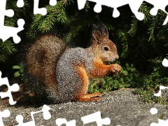 conifer, squirrel, Stone