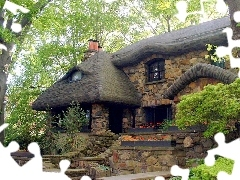 Cottage, Home