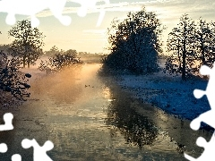ducks, viewes, Fog, River, winter, trees