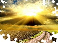 west, Way, field, sun