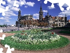 flowerbed, buildings, Germany, Theatre Square, Dresden