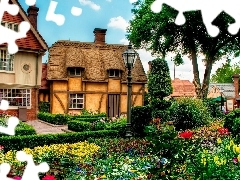 English, garden, Flowers, Houses