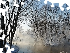 Fog, winter, viewes, River, trees