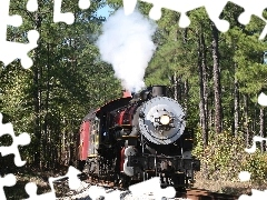 forest, locomotive