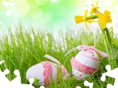 grass, Daffodils, Easter, eggs
