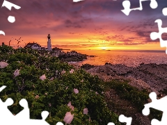Great Sunsets, rocks, Lighthouses, Flowers, sea