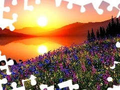 Great Sunsets, Meadow, lake, Flowers, Mountains