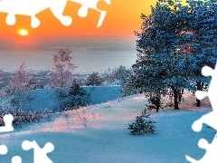 winter, viewes, Great Sunsets, trees