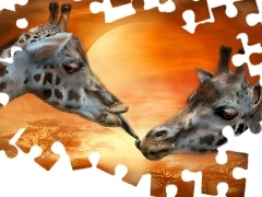 giraffe, kiss, Two