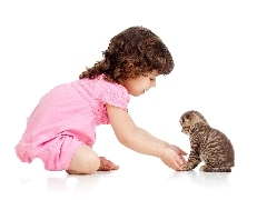 kitten, small, girl