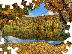 Leaf, autumn, Mountains, woods, lake