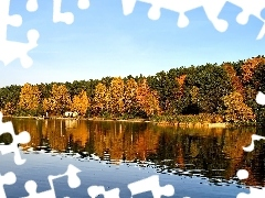 trees, lake, Leaf, Sky, viewes, autumn