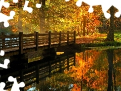 flash, ligh, luminosity, sun, Park, River, autumn, bridge