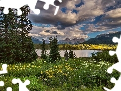 Meadow, Wildflowers, Mountains, lake, clouds