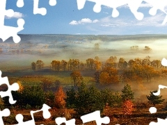 viewes, field, panorama, autumn, Fog, trees
