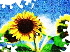 oil, Nice sunflowers, picture