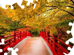 Red, bridge, trees, viewes, autumn