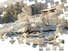trees, winter, Bush, house, viewes, Pond - car