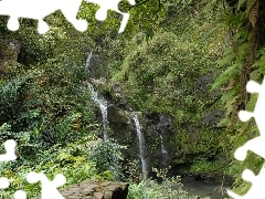 trees, Rocks, waterfall, Bush, Mountains