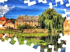 water, House, water, lilies, Willow