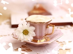 White, Daisy, plate, coffee, cup